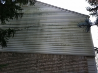 Siding Cleaning  Macomb County