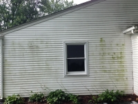 Siding Cleaning  Macomb County, MI