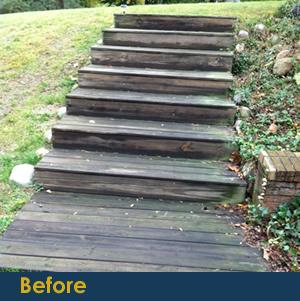 Macomb County Wood Restoration