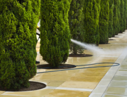 Pressure Washing Driveways – Why and When?
