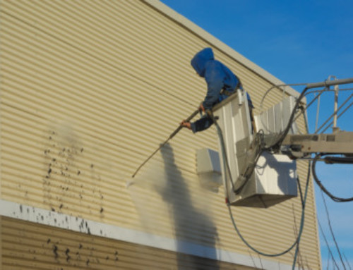 When to Clean and When to Replace Siding