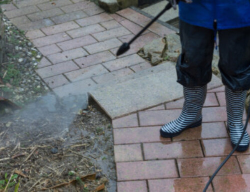 Maintenance Tips for Keeping Pavers Looking New